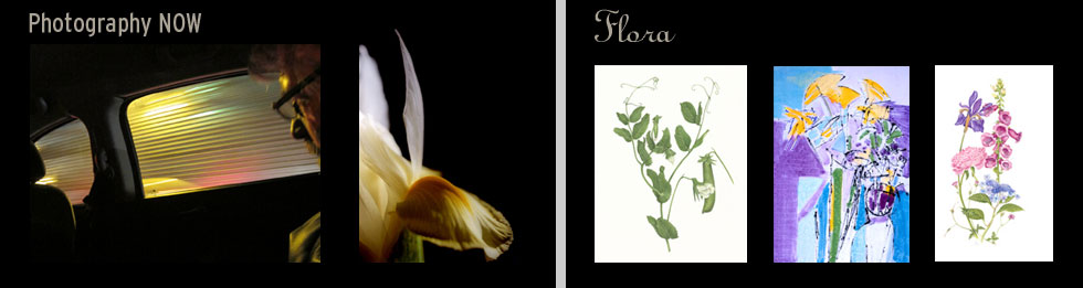 Photography Now, Flora